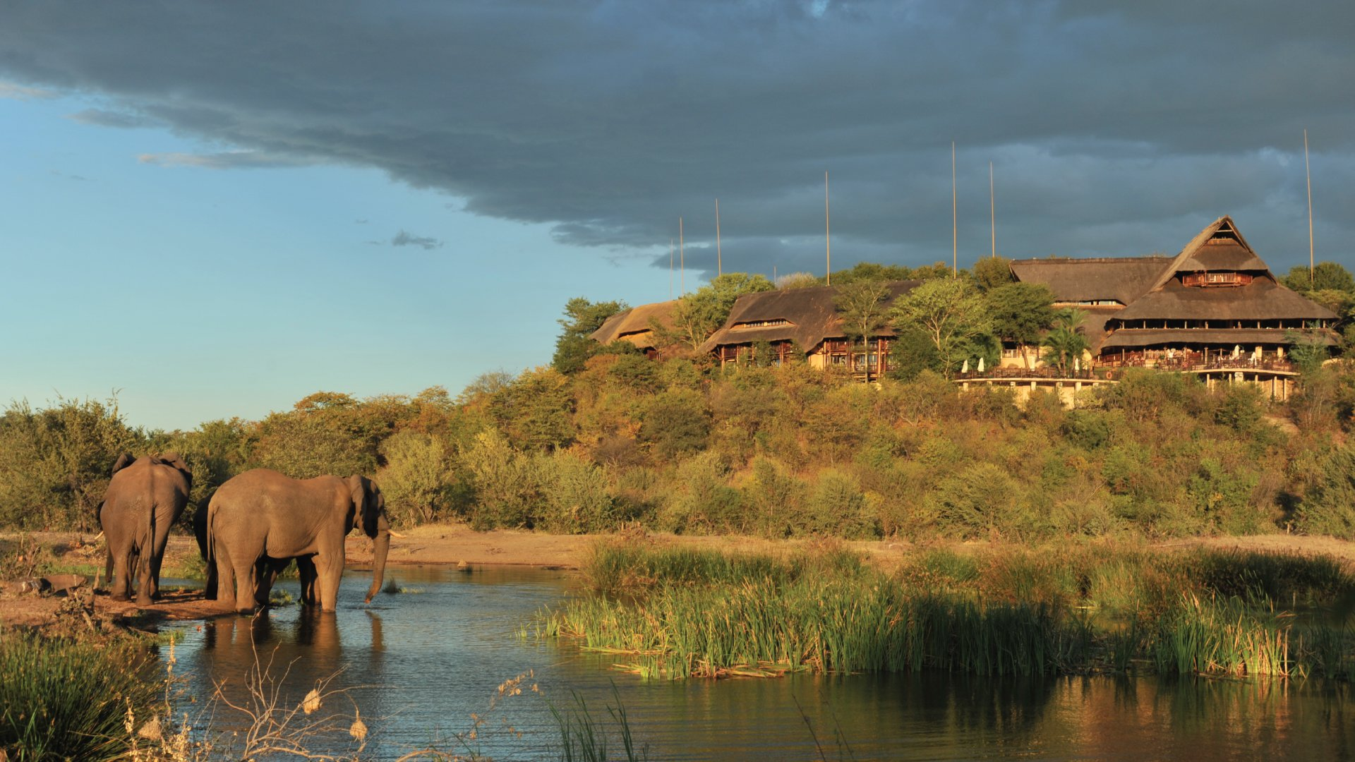 Victoria-Falls-Safari-Lodge-waterhole